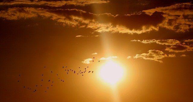 Prevención y tratamiento de quemaduras solares